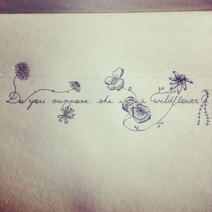 Do you suppose she is a wildflower? Quote by Lewis Carroll from Alice in Wonderland. Drawn out by me as a tattoo design. Supposed to be a bracelet tattoo around my upper forearm!