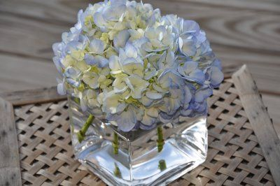 Hydrangea centerpieces with square glass vase
