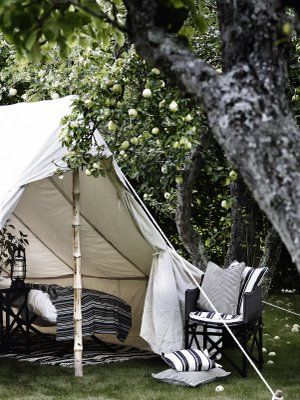 I want a tent in my backyard during the warm months. How amazing would that be? Sleep outside when its cool  (apple orchard camping)
