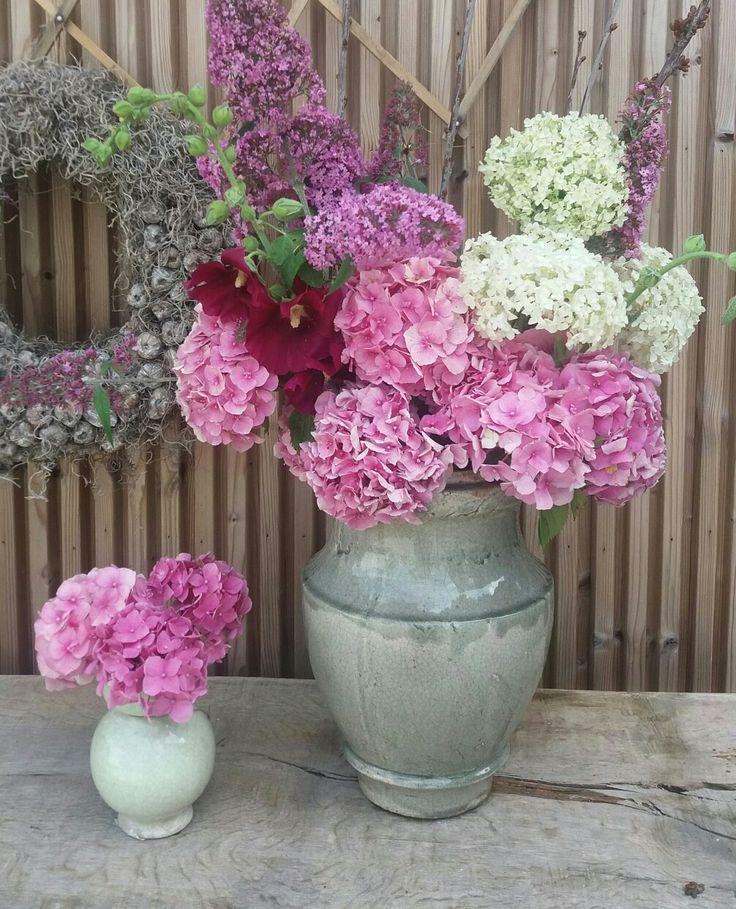 Brynxz#de balans@home#flowers from the garden