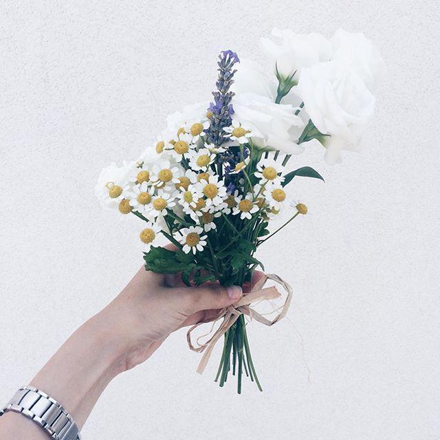 Valentina Siragusa @valentinasiragusa Flowers in this m...Instagram photo | Websta (Webstagram)
