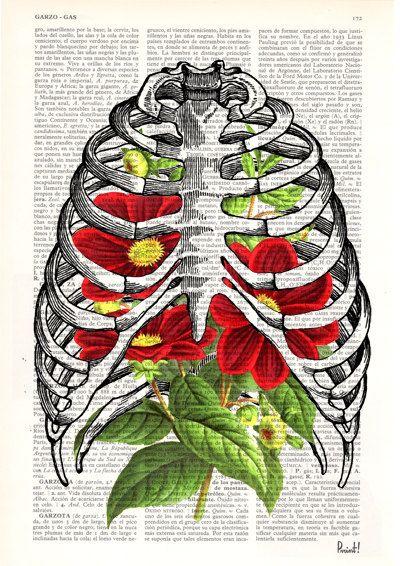 Gabbia toracica con dhalias anatomia umana stampa di PRRINT