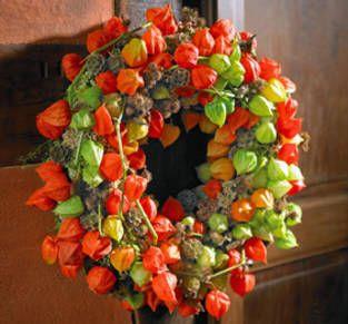 BLOOM's / Lifestyle mit Blumen und Pflanzen: Wissenswertes