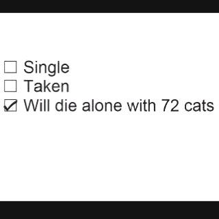 Story of my life. Ha.72 Cat, Crazy Cat Lady