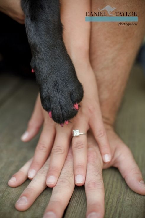 I would never marry a man that did not love my dog at least as much as he loves me!