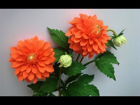 ABC TV   How To Make Dahlia Paper Flower From Crepe Paper #2 - Craft Tut...