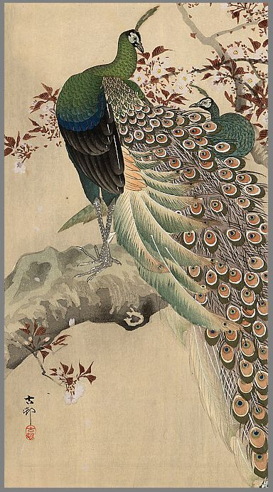 Koson  (1877 - 1945)  Two green peacocks on the bough of a flowering tree, ca.1910