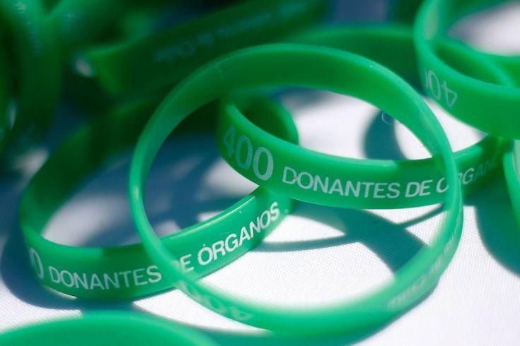 #Donación de órganos: Lo parecido de las leyes de Holanda y Chile - Publimetro Chile: Publimetro Chile Donación de órganos: Lo parecido de…