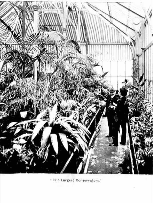"""PH 7821. """"The largest conservatory"""",  """"Leura"""", Toorak. Mr. Payne andreporter inspect the collection of different varieties of palms, ferns etc., in the conservatory which Mr. Payne regards as the largest one in Melbourne, public or private;c.1904."""