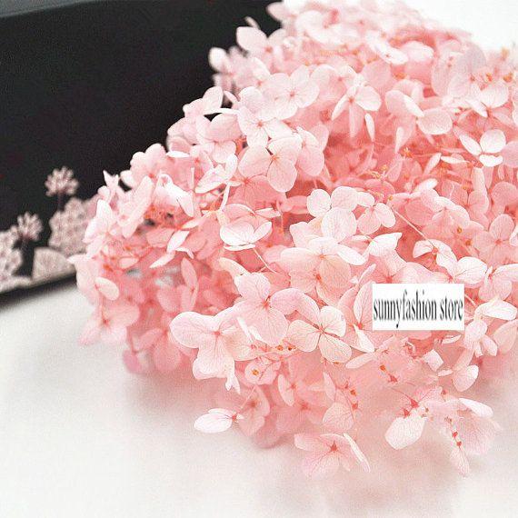 7 best preserved fresh flower images on Pinterest | Flower ...
