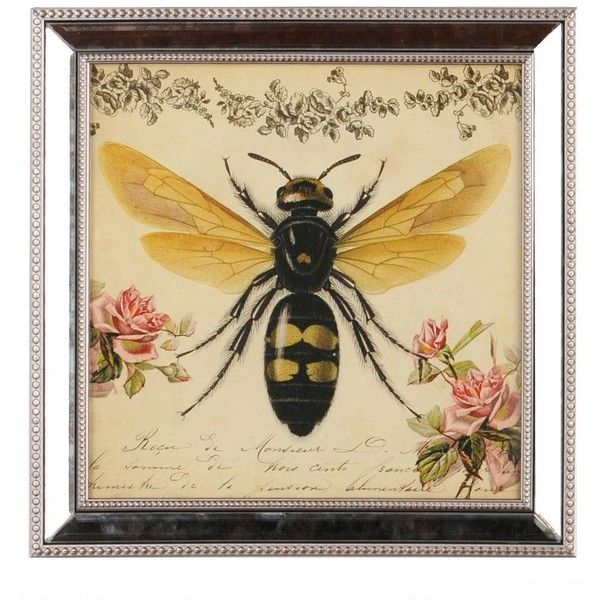 Botanical Bee Framed Art Print (€9,91) ❤ liked on Polyvore featuring home, home decor, wall art, art, fillers, beaded panel, framed wall art, floral home decor and floral wall art