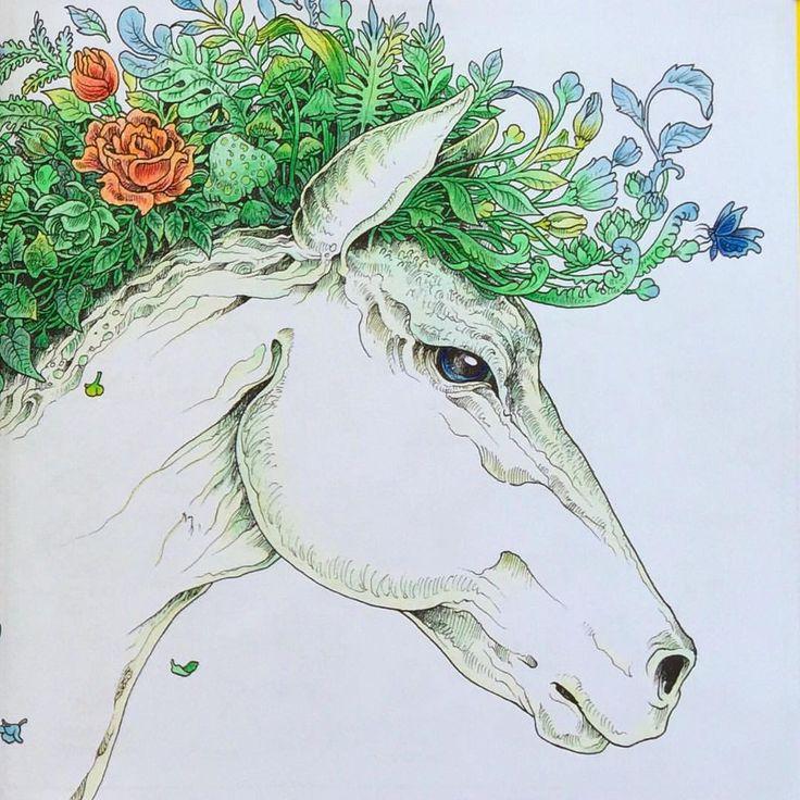 20 best Faglar & fjarilar coloring book images on Pinterest ...