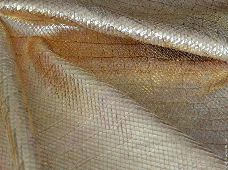 Купить или заказать Натуральная кожа Золотая чешуя 0,8 мм в интернет-магазине на Ярмарке Мастеров. Натуральная кожа золотого цвета с выделкой 'под чешую'. Мездра мягкая, толщина шкурок около 0,7-0,8 мм. Изнаночная сторона однотонная светлая. Натуральная кожа подойдет для изготовления браслетов, летних сумочек, обложек, клатчей, косметичек, комбинирования, творческих работ.