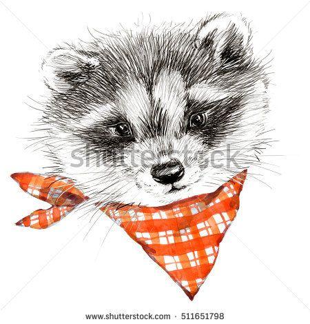 cute raccoon. hand drawn forest animal sketch illustration