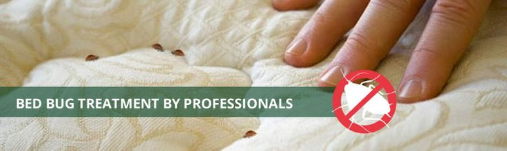 Affordable Bed Bug Exterminators offer the quickest bed bug treatment in Milwaukee. We have same day availability to take care of bed bug problem.
