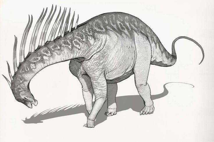 Draw Dinovember Day 29 Amargasaurus, Raul Ramos on ArtStation at https://www.artstation.com/artwork/k2QZ2