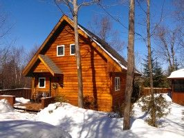 Mont Tremblant chalet rental - Just as nice - winter or summer!