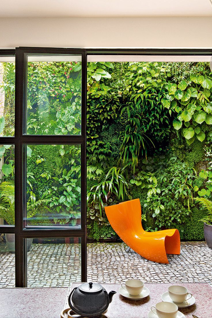 Making use of the vertical in a tiny courtyard = a green painting!