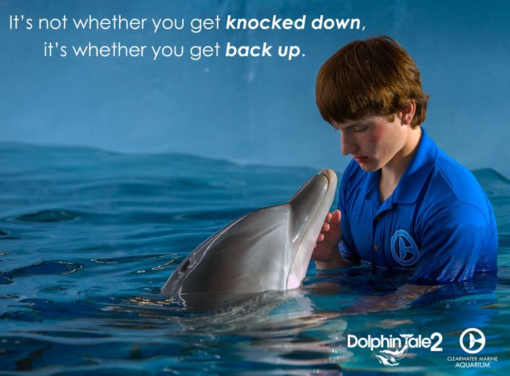 """It's not whether you get knocked down, it's whether you get back up."""