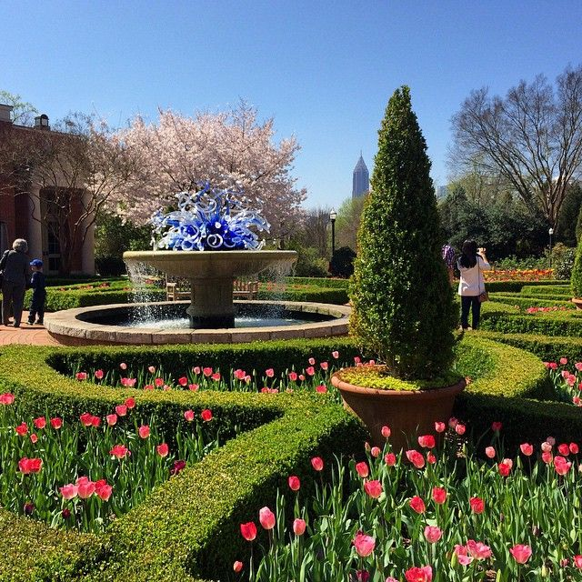 Atlanta Botanical Garden Skyline Gardens: 119 Best Springtime In Georgia Images On Pinterest