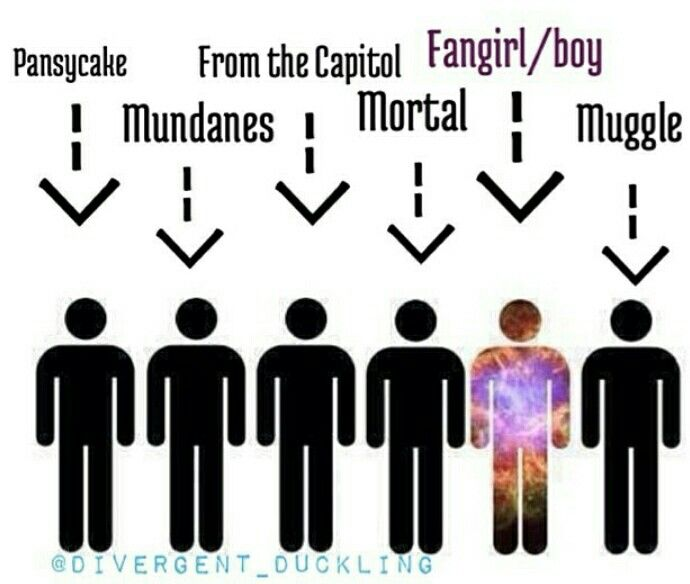 Repin for fangirl/boy<< I love how it's all one worded insults and then there's The Hunger Games fandom..