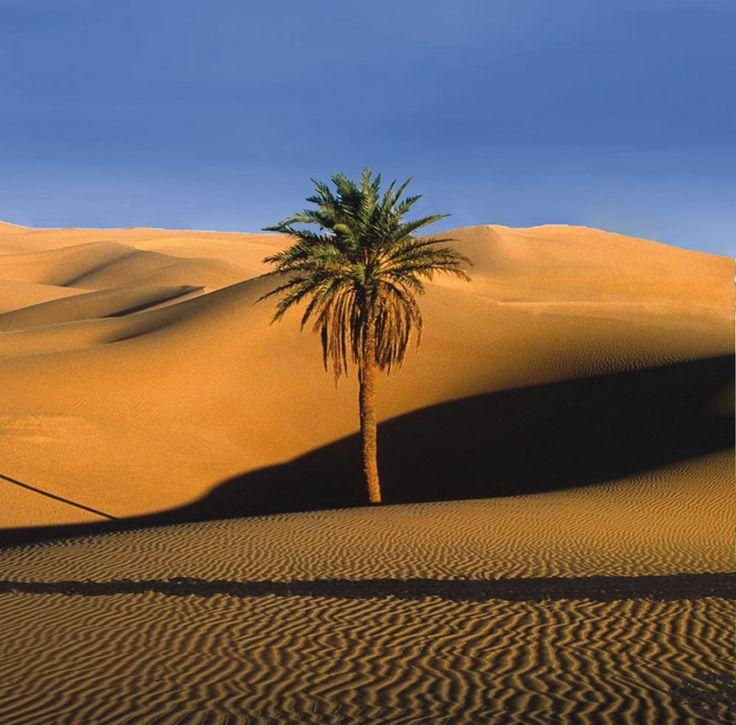Desert Maroc - Desert Morocco