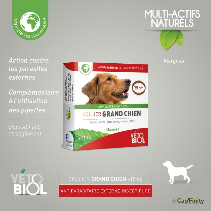 VETOBIOL - Collier Antiparasitaire Grand Chien #vetobiol #NaturelEtEfficace #chat #chien #Soins #ActifsNaturels #SansPesticides #Antiparasitaire