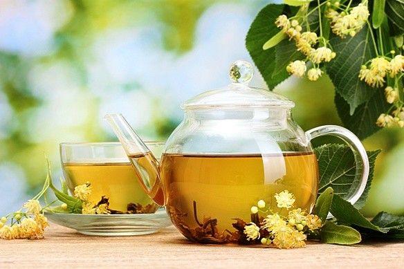 Hárs: virága, méze, ága is gyógyít! - HáziPatika