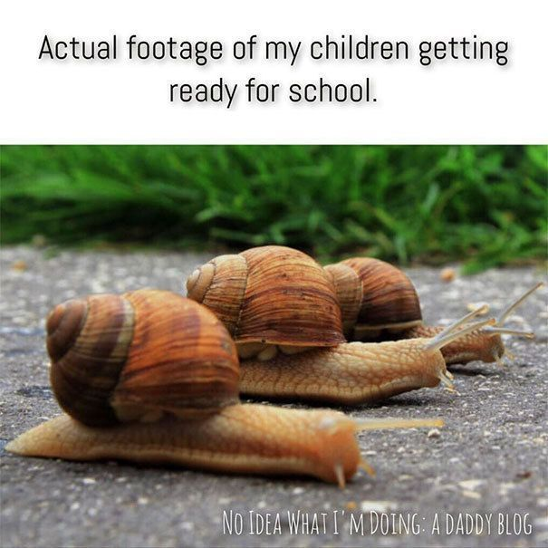 Funny Parenting Memes That Perfectly Describe What It's Like Having Kids. - http://www.lifebuzz.com/parenting-memes/ #ParentingGirls