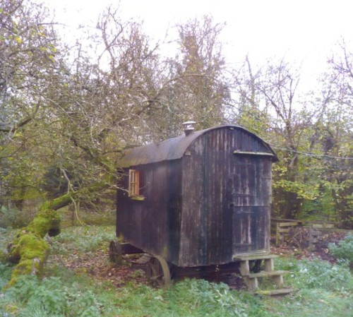 Shepherds Hut | eBay
