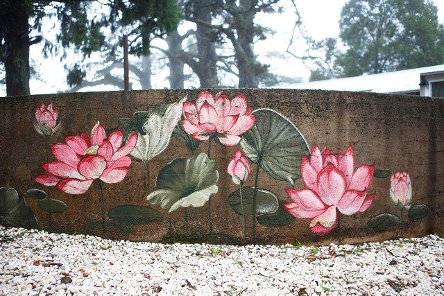outdoor wall painting lotus blossoms mural