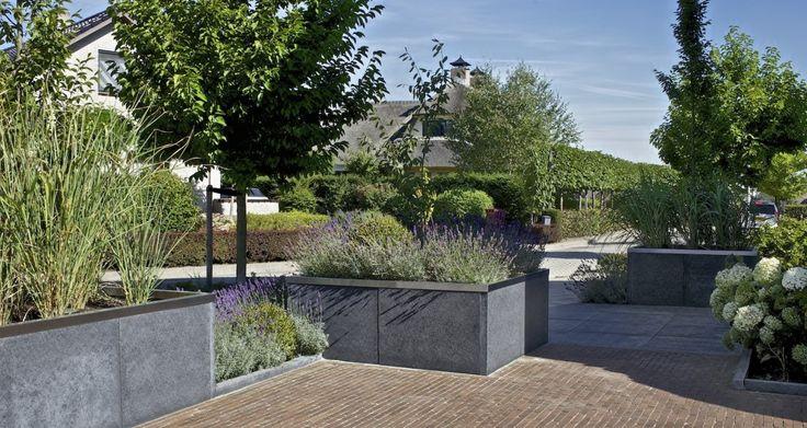 Een erg moderne voortuin. De beplanting van deze tuin past goed bij elkaar, waardoor er een schitterend totaalplaatje is ontstaan.