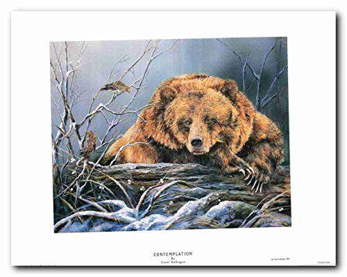 Contemplation Grizzly Bear Wall Decor Art Print Poster (2... https://www.amazon.com/dp/B01I5E6SR6/ref=cm_sw_r_pi_dp_x_T7zPxb113CBXF