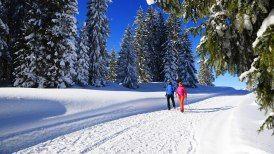 Premium Winterwandern in Reit im Winkl / Chiemgau/ Bayern