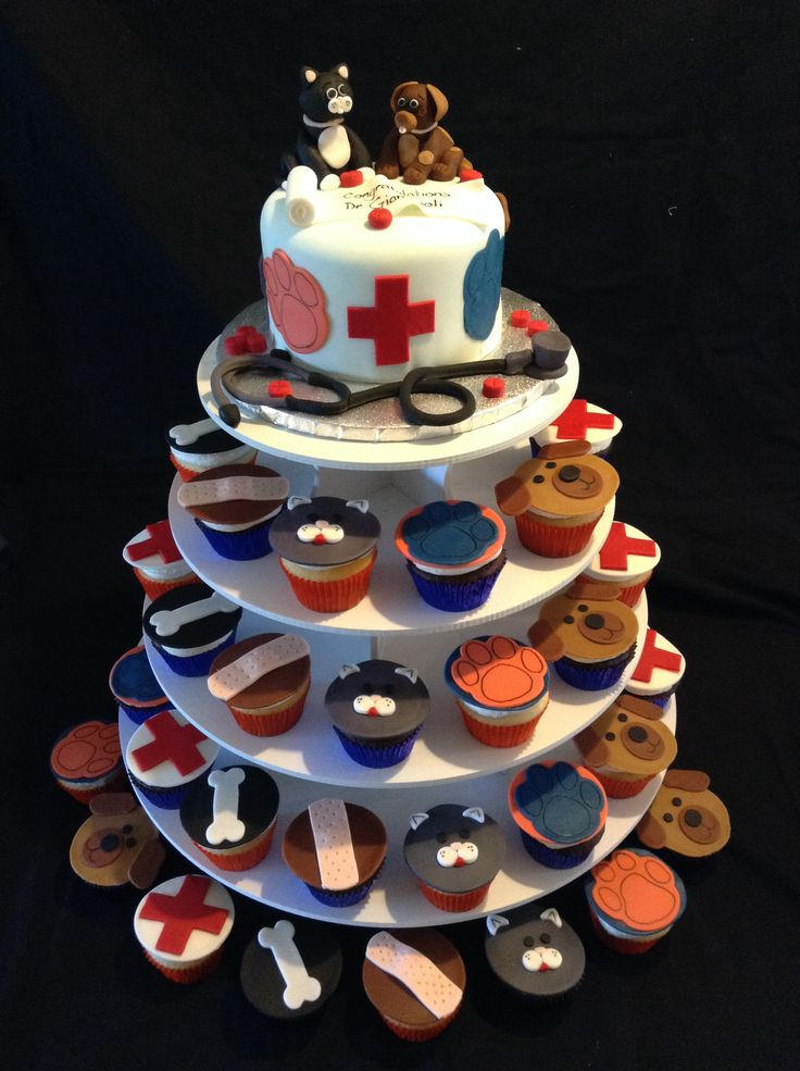 Veterinarian Cake | Kelly's Cakes and Creations ...