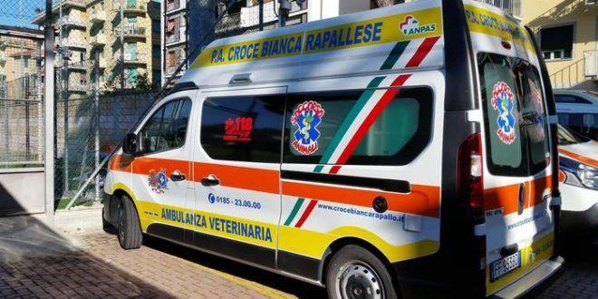 Rapallo (GE): prima ambulanza dedicata al soccorso animali