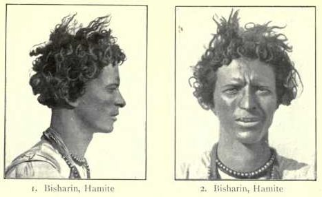 """Hamitic Theory: Negroids Are Inferior According to the theory, the Hamitic race (classified by European authors as a sub-group of the Caucasian race), was superior to and more advanced than the Negroid. W. E. B. Du Bois wrote that """"the term Hamite under which millions of Negroes have been characteristically transferred to the white race …"""