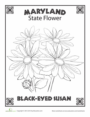 107 best State flower blocks images