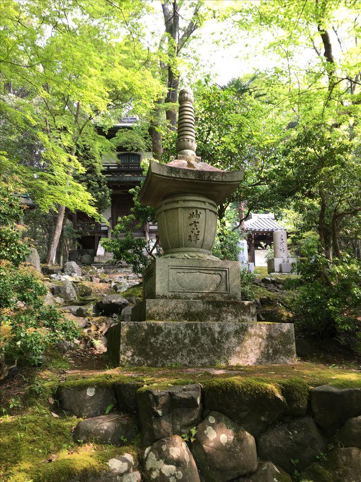 61 Best Pagodas Images On Pinterest Japanese Gardens Asian Garden And Zen Gardens