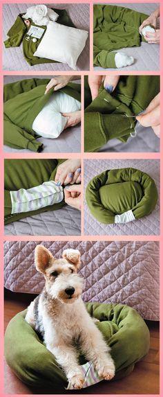 Faça Você Mesmo - Caminha macia para cachorro usando um moletom
