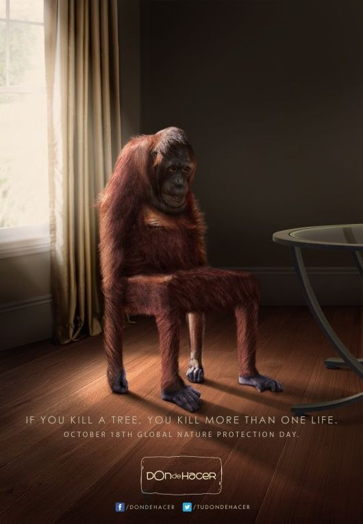 """""""If you kill a tree, you kill more than one life. October 18th Global Nature Protection Day."""" for Don de Hacer by Room23. #animal #monkey #protect #Good #ad"""
