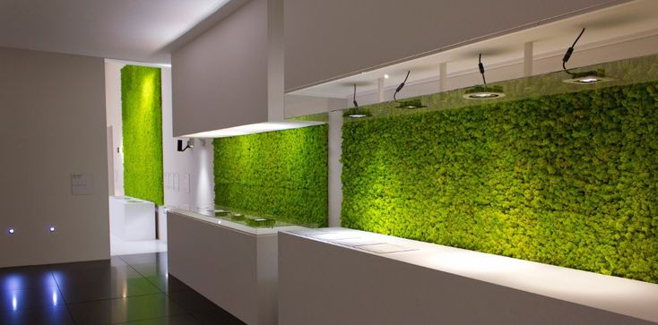Modern Kitchen With A Wall Overed With Grass Beautify