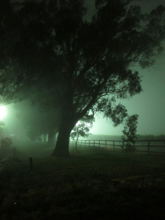 Photo and caption by Kelly Fenwick The fog rolls in over the vineyards after an Australia Day concert. Location: Bowral, Sydney, Australia