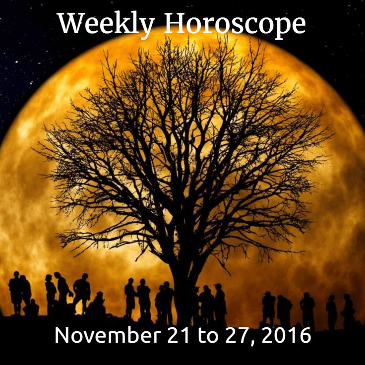 Free weekly horoscopes for November 21 to 27, 2016.