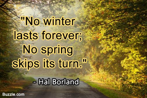 Funny and Cute Spring Quotes That Will Make You Smile All Day Funny Spring Fever Quotes | No winter lasts forever; no spring skips its turn.
