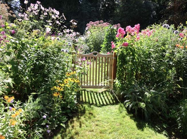 17 best images about gardening on pinterest gardens for Less maintenance plants