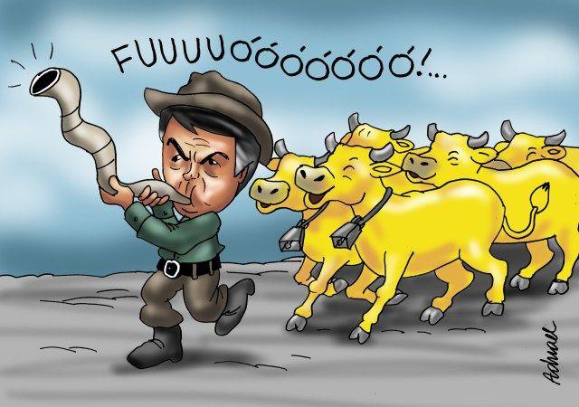 Damares responde o Gado (assim são chamados os apoiadores de qualquer sandice de Jair Bolsonaro). (Foto: Reprodução/ Pinterest)