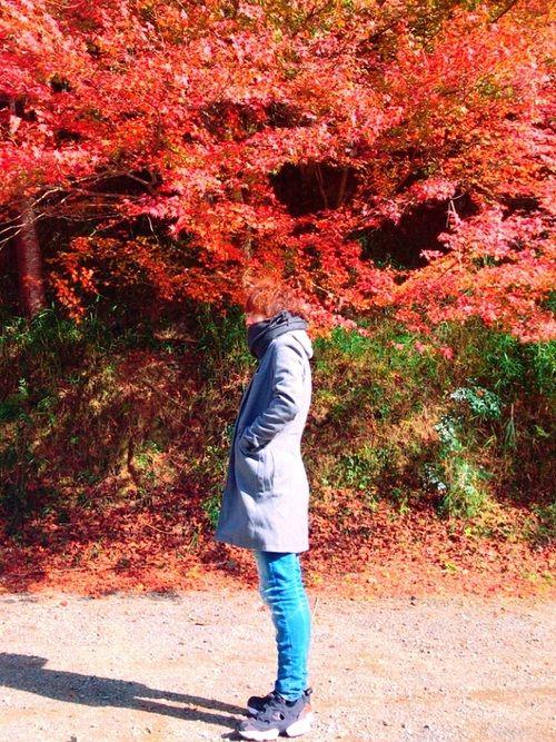 秋月の紅葉。 今日は北風😐