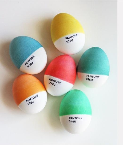 cutest eggs ever