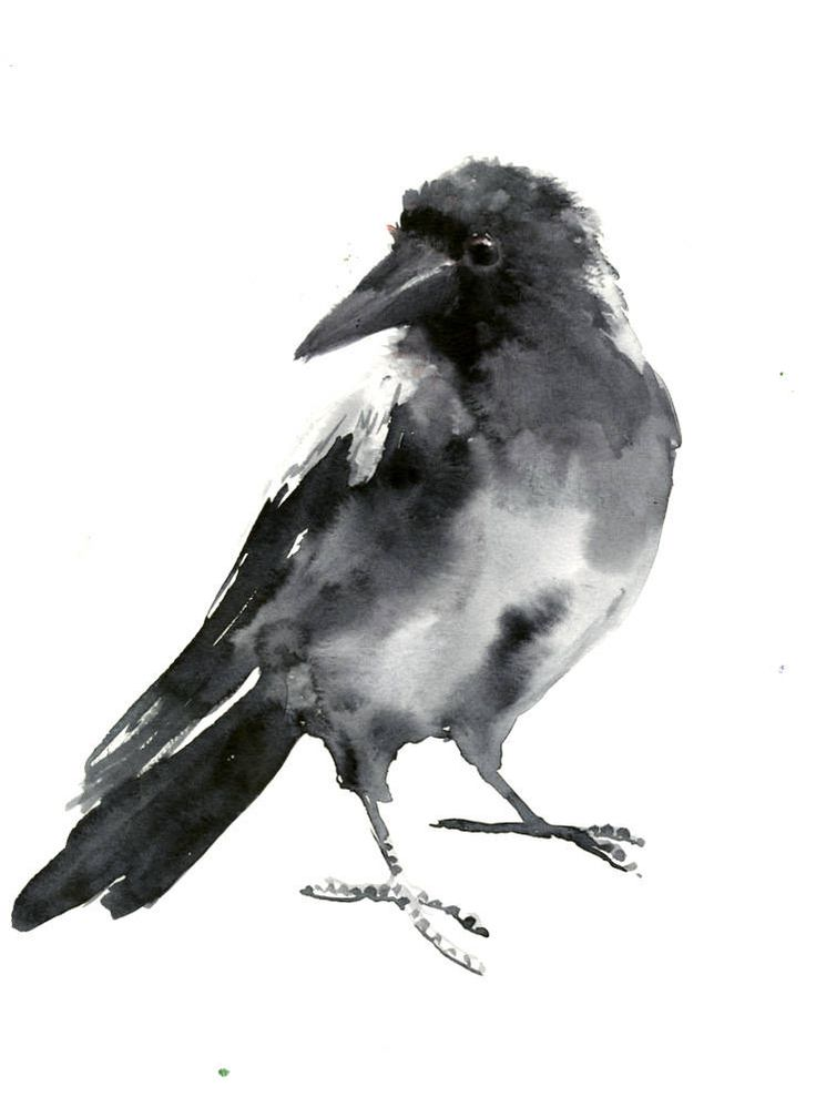 Crow, bird artwork original one of a kind watercolor painting, crow painting by ORIGINALONLY on Etsy